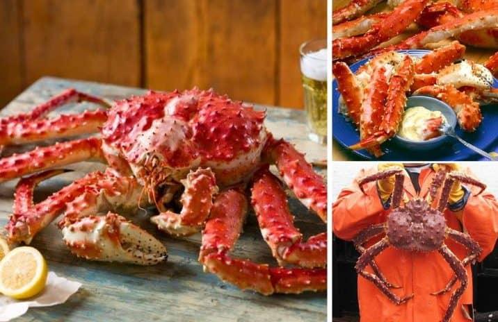 online store design- RedDeliBox king crab