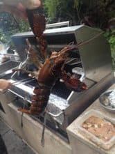 holding-a-maine-lobster-bbq