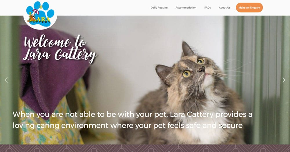 small-business-new-website-1